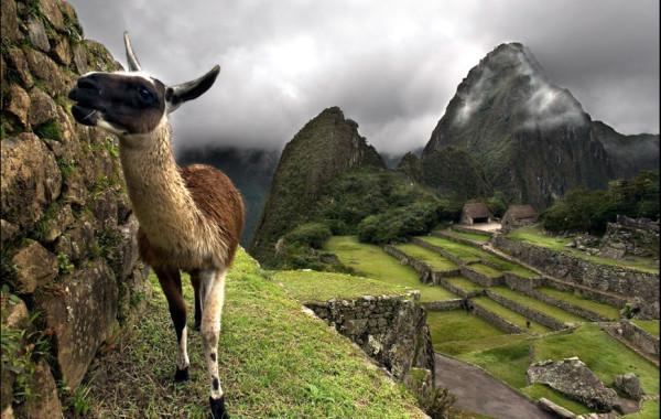 Могущественная Империя Инков