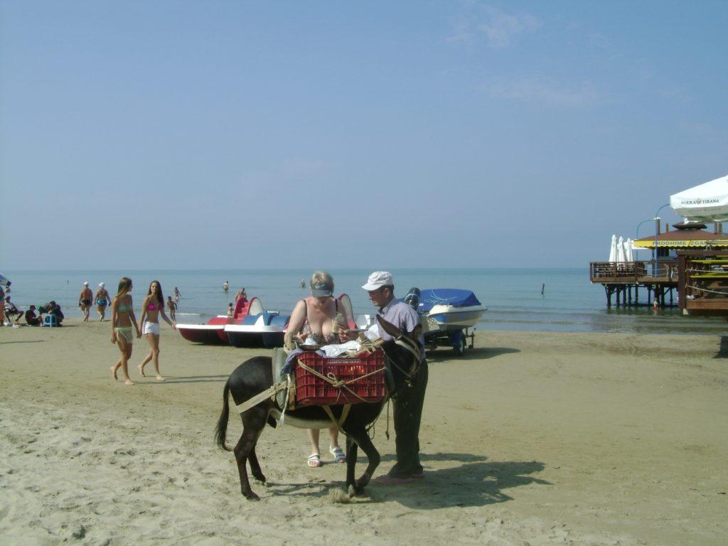 Ослик на пляже помогает хозяину возить овощи и фрукты