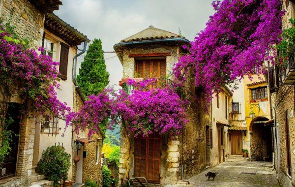 Тур Путешествие по Южной Франции