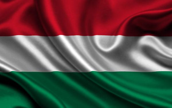 В Венгрию с Владимиром Паллаем!